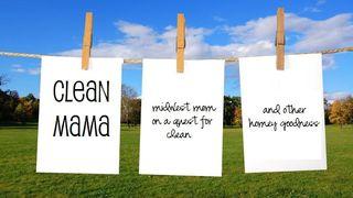 Clean mama banner