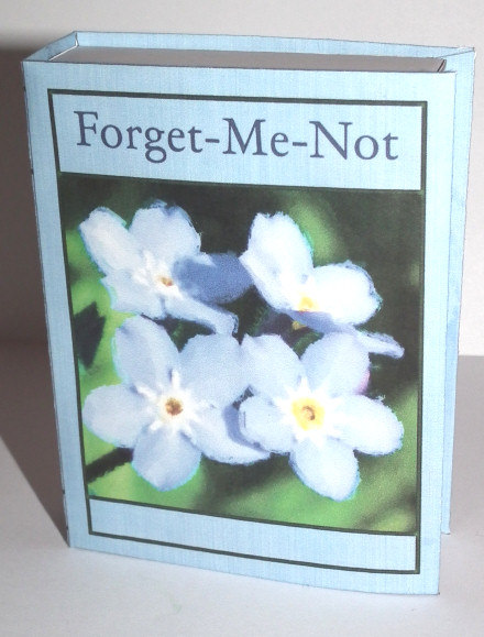 ForgetMeNotSlideBox