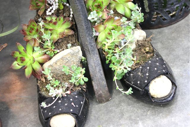 Succulents-shoe-planters