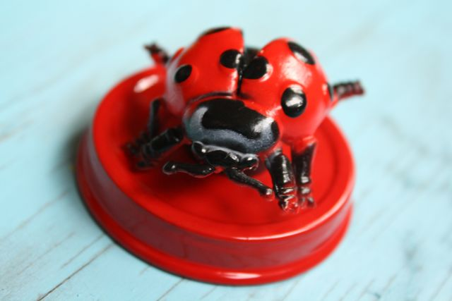 Ladybug Magnetic Bug Jars Ladybug Lid - Yesterday on Tuesday