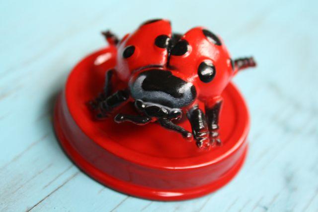 Ladybug Magnetic Bug Jars Ladybug Lid - Yesterday on Tuesday