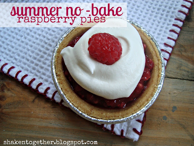 Summer no-bake raspberry pies main BLOG