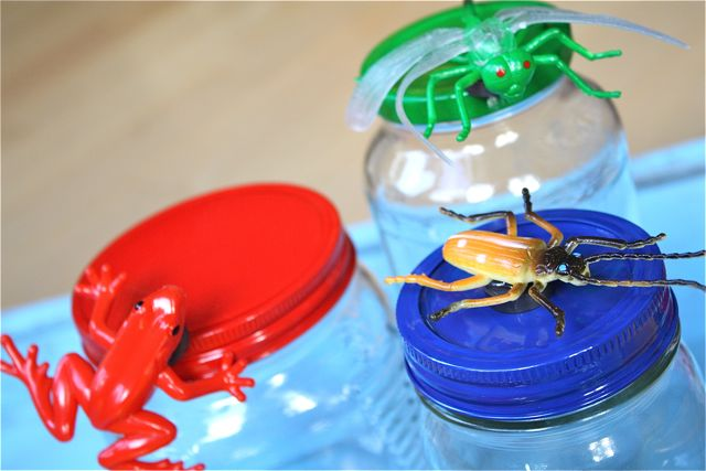 Red Frog Magnetic Bug Jars for Storage Frog - Yesterday on Tuesday