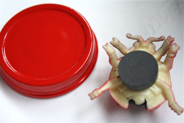 Adhering Magnet Magnetic Bug Jars Ladybug - Yesterday on Tuesday