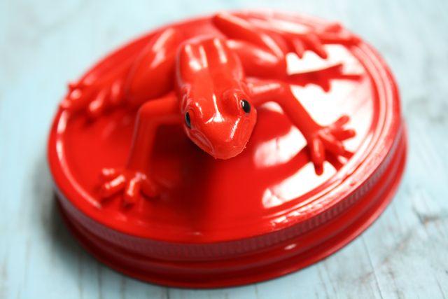 Frog Magnetic Bug Jars - Yesterday on Tuesday