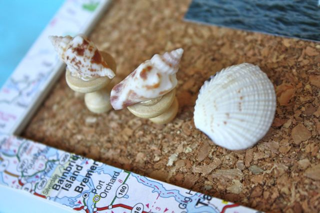 Shell Pushpins on Corkboard - Yesterday on Tuesday