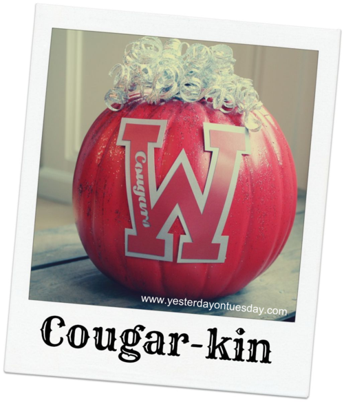 Cougar-kin -Yesterday on Tuesday #pumpkin
