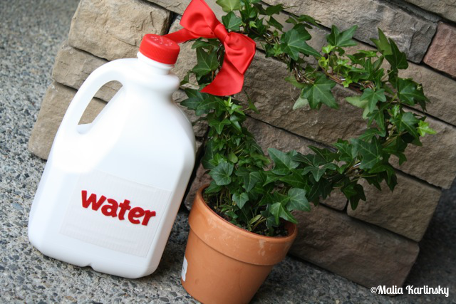UpCycled Watering Jug - YoT #milkjug #wateringcan #organizing #freeorganizing #frugalorganizing #yesterdayontuesday