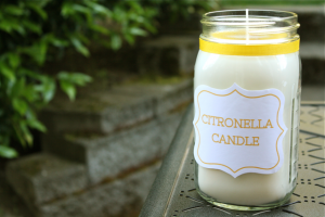 Soy Citronella Candle Tutorial