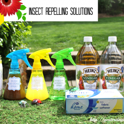 Insect Repelling Solutions