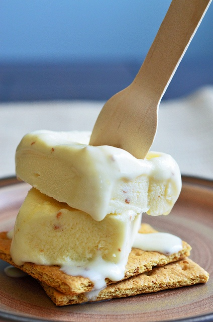 Roasted Marshmallow Ice Cream - Seeded at the Table