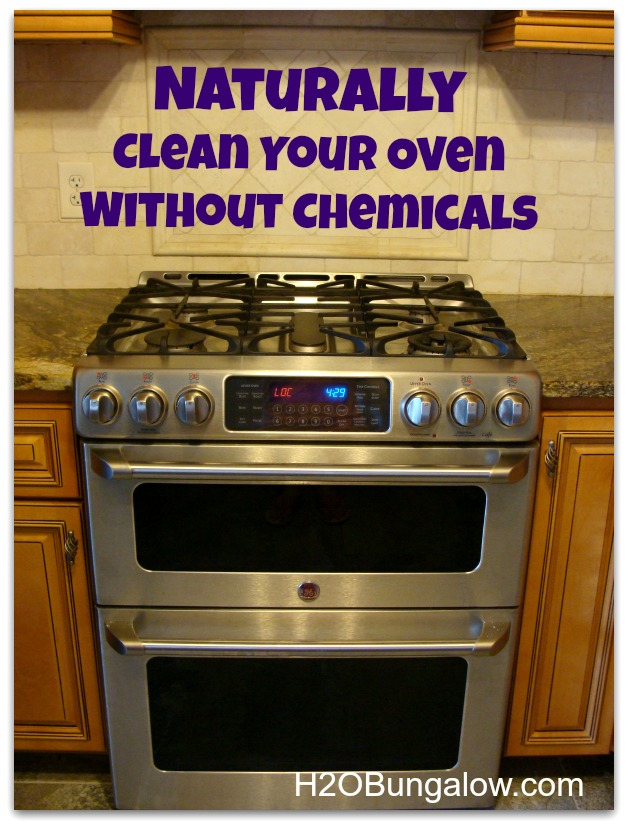 Naturally-Clean-Oven