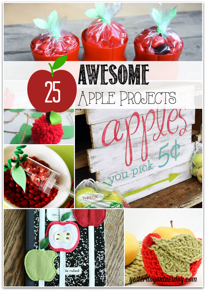 25-Awesome-Apple-Projects-698x989
