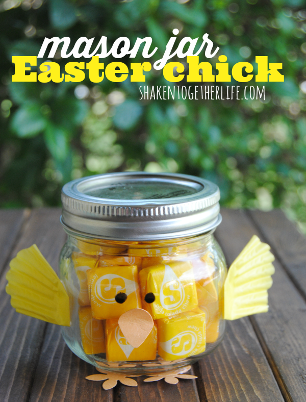 Mason Jar Easter Chick from Shaken Together Life