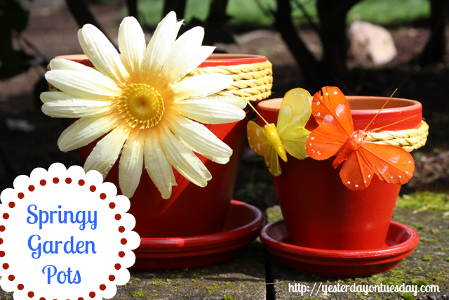 Budget friendly flower pots