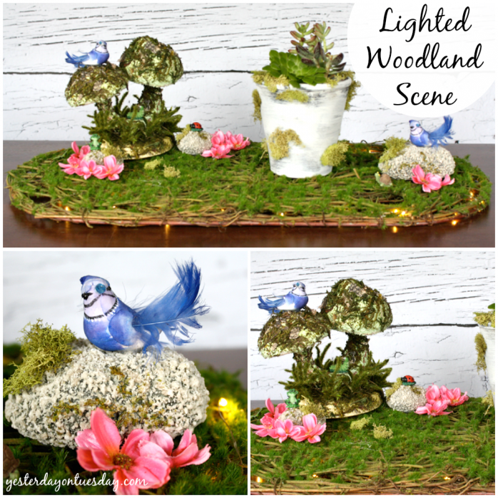 Lighted Woodland Scene with Succulents
