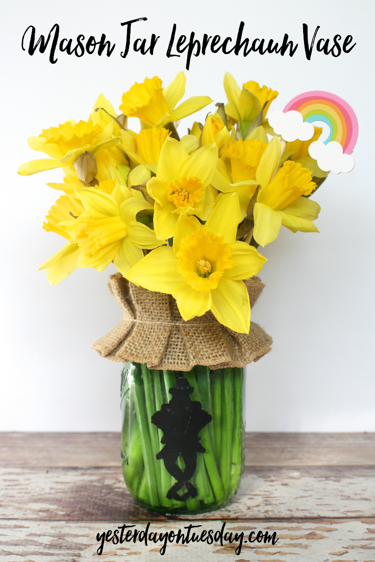 DIY Mason Jar Leprechaun Vase, Great For St. Patricku0027s Day And Spring  Decorating