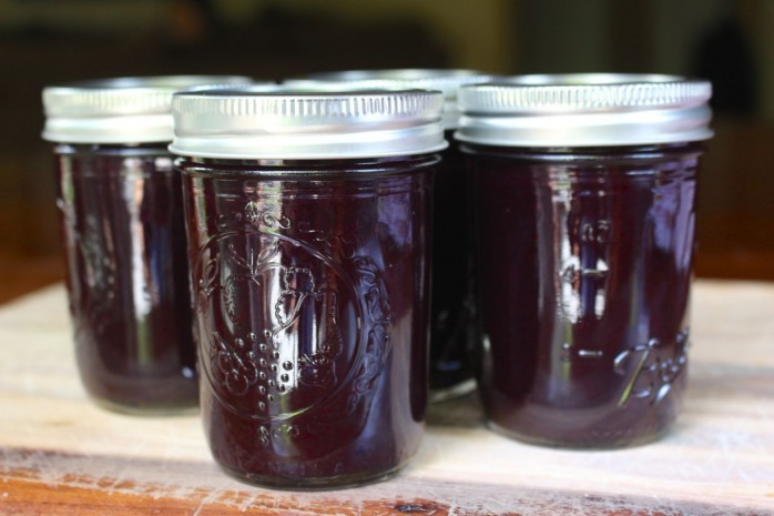 Blueberry Jam Recipe: An easy and delicious recipe for blueberries. Great on crackers, bread and ice cream.