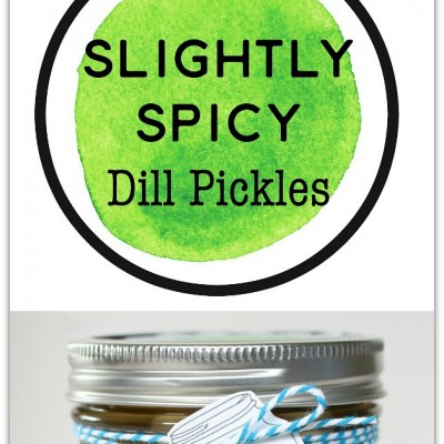 Slightly Spicy Dill Pickles
