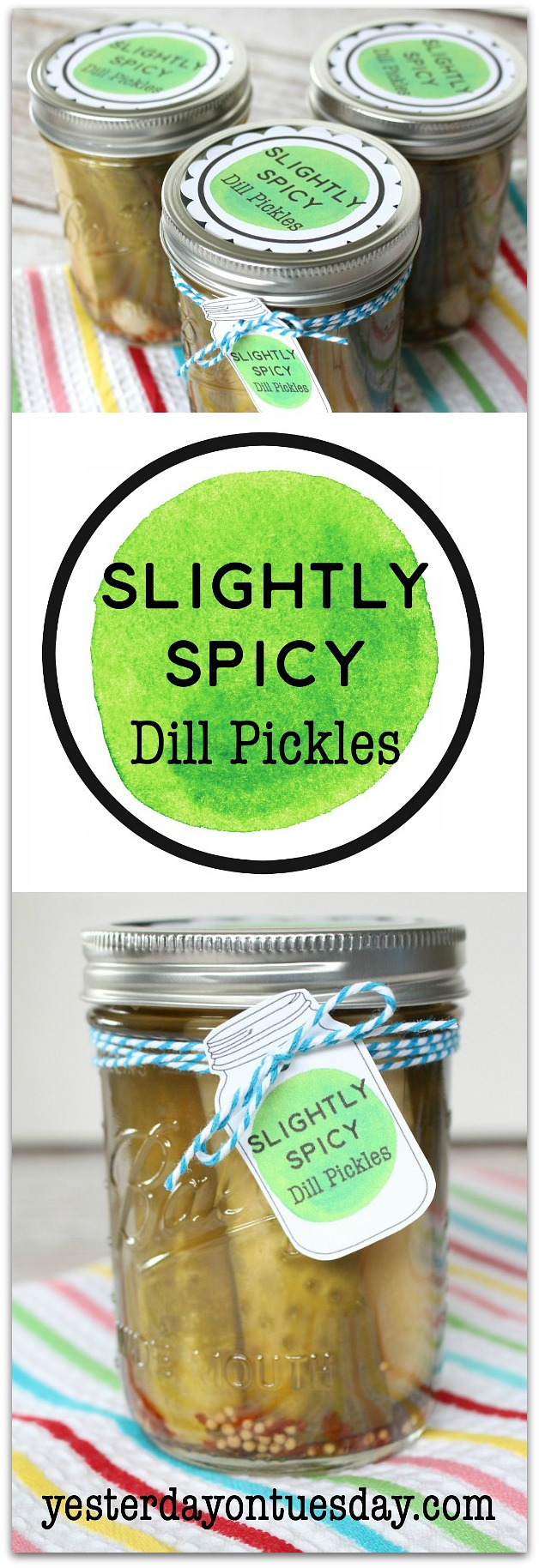 Slightly Spicy Dill Pickles Recipe: How to make deliciously spicy dill pickles at home! Perfect for barbecues and picnics.
