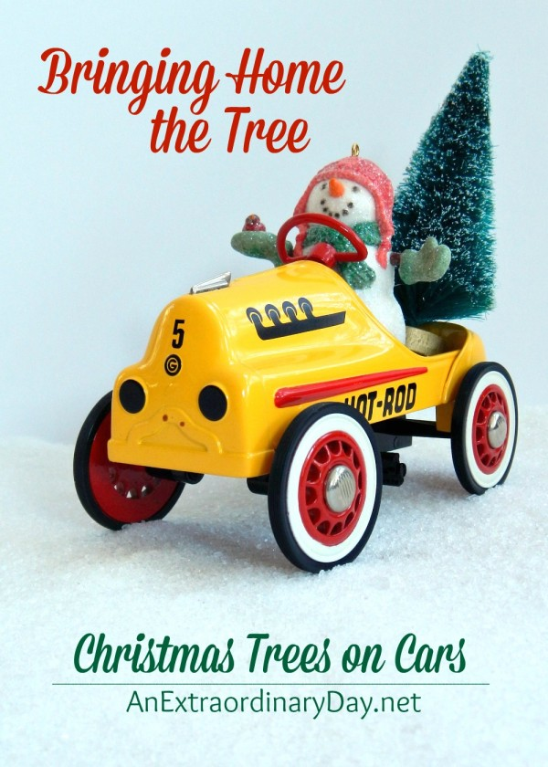 bringing-home-the-tree-for-the-christmas-trees-on-cars-blog-hop-at-anextraordinaryday-net_-e1418397515557