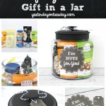 I'm Nuts for You Gift in a Jar: A fun and budget friendly present for your husband, dad, mom, teen boy or girl gift, anyone for a birthday or thank you!