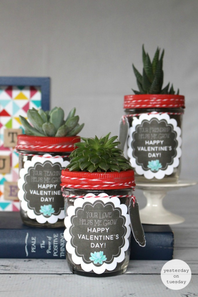 Valentine's Day Succulent Gift Labels and Tags: Cute chalkboard labels and tags for friends, teachers and loved ones. Just add succulents and mason jar!
