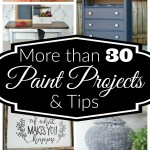 30+ Paint Projects and Tips