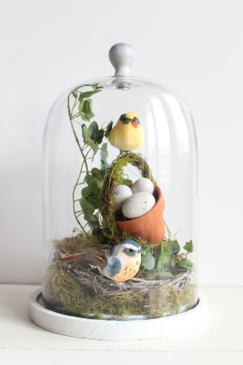 DIY Bird's Nest Cloche
