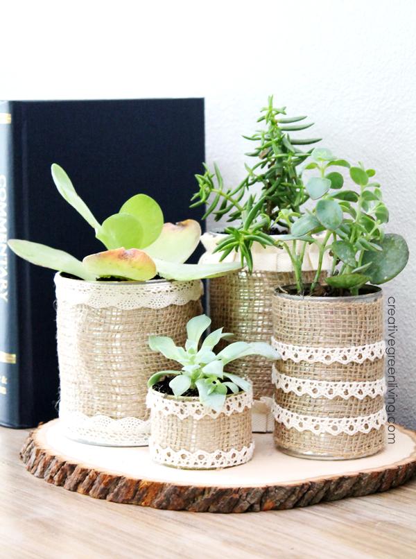 DIY Succulent Planters