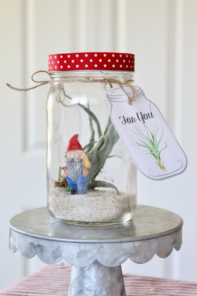 Charming Air Plant Mason Jar Tags