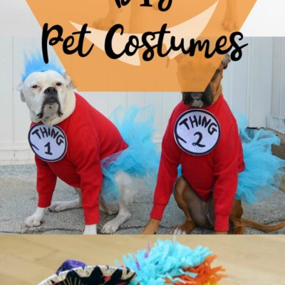 12 DIY Pet Costumes