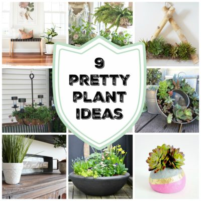 9 Pretty Plant Ideas