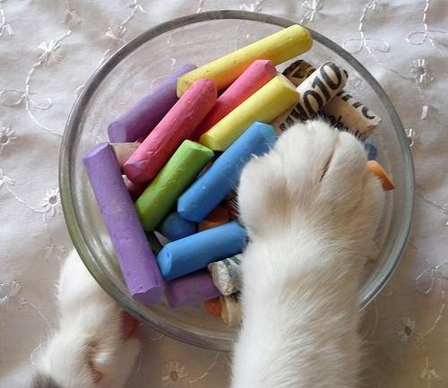 Cat'sPaw