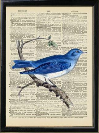 Abluebird