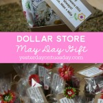 Dollar Store May Day Gift Idea