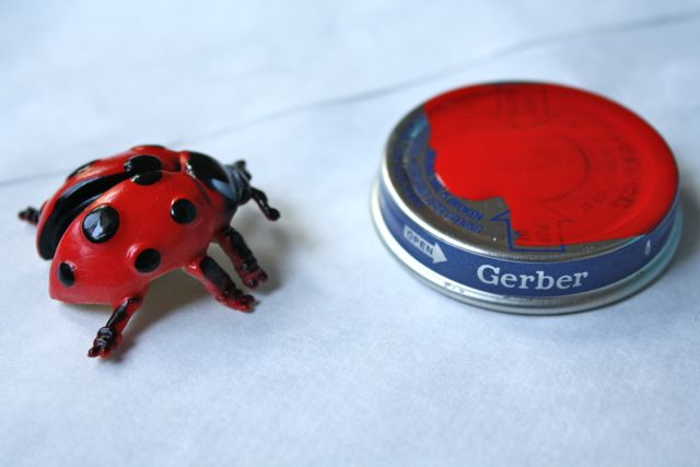Painting Magnetic Bug Jar Lids - Yesterday on Tuesday