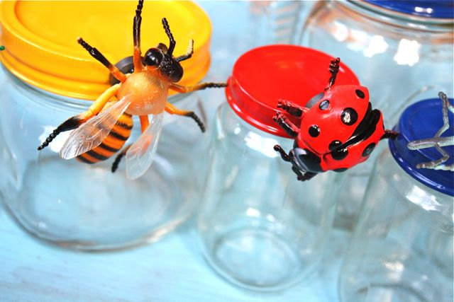 Bee Magnetic Bug Jars for Storage - Yesterday on Tuesday