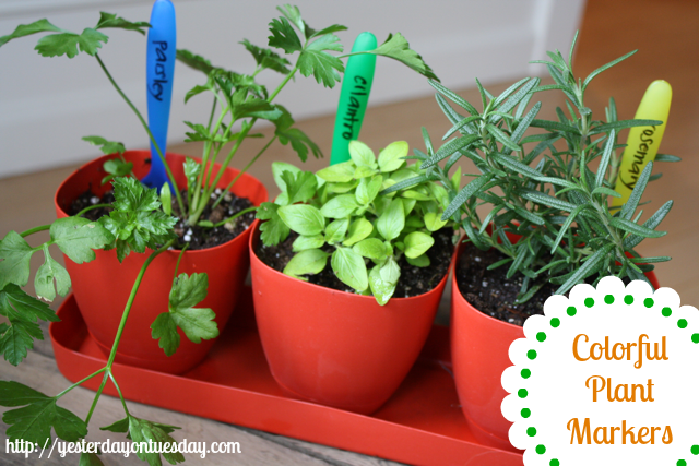 Cheap Plant Markers