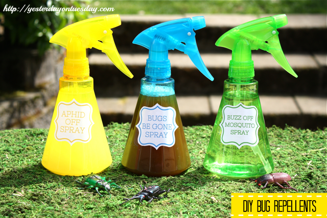 Make your own bug repellents