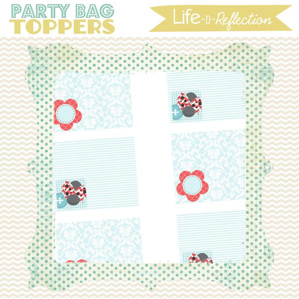 lifenreflection_preview_bagtops_ladybug