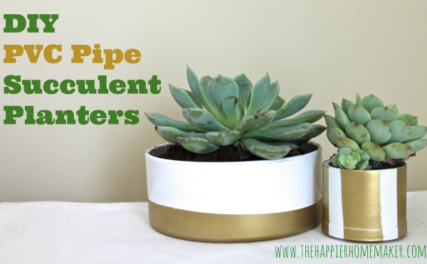 pvc-pipe-succulent-planter