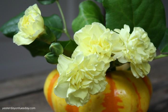 Rustic Gourd Vases
