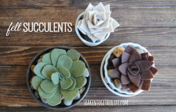 DIY-felt-succulents-featured