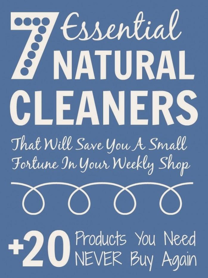 7 Cleaning Essentials