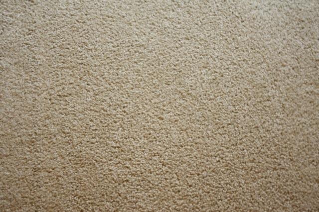 Keeping My Carpet Clean with Eureka