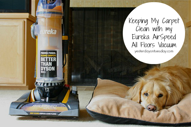 Keep My Carpet Clean with Eureka
