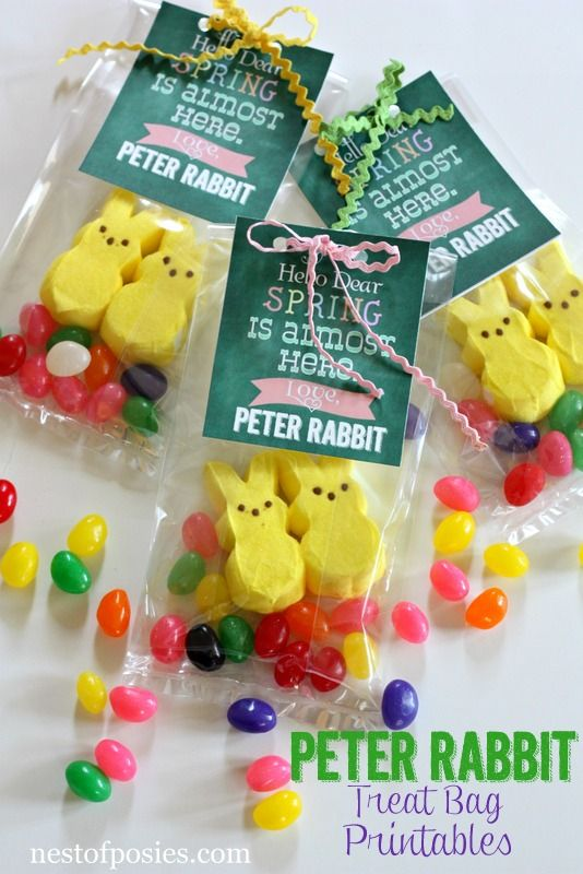 Peter Rabbit Treat Bag Bunnies