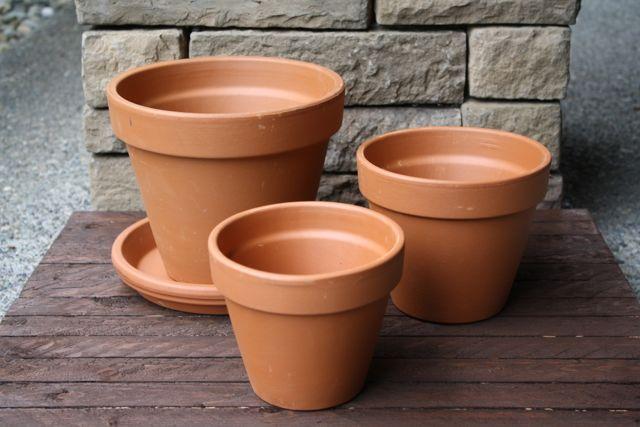 Fall Flower Pots