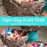 Paper Bag Bird's Nest